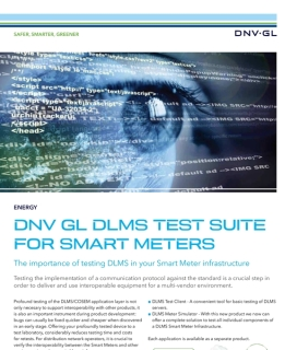 DLMS test facilities