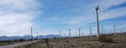 Image Asset Management for Wind Farm Owners